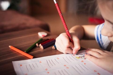 Survei: Anak Milenial