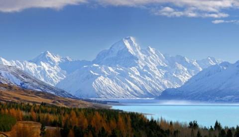 Lima Tipe Traveler dan Lokasi Wisata yang Cocok di Selandia Baru
