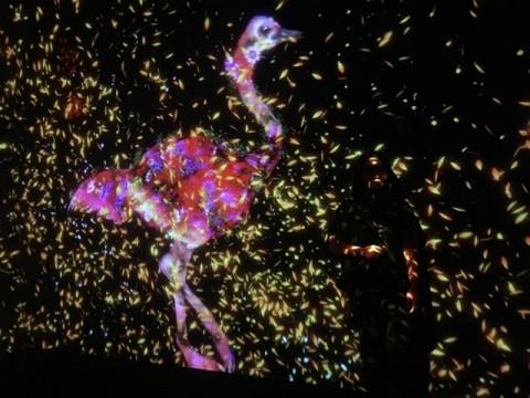 Berwisata ke Taman Masa Depan Lewat Instalasi Digital