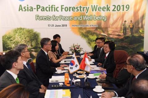 Kerja Sama Kehutanan Indonesia-Korsel Akan Libatkan Milenial