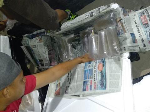 Penyelundupan Benih Lobster Senilai Rp17 Miliar Digagalkan