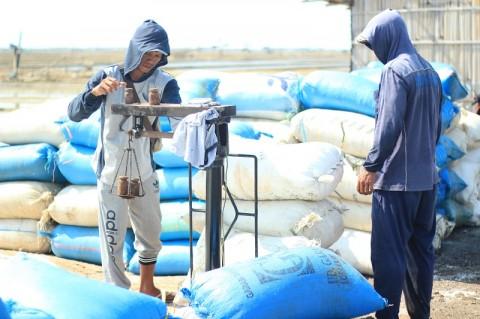 Pemerintah Diminta Segera Tetapkan Harga Garam
