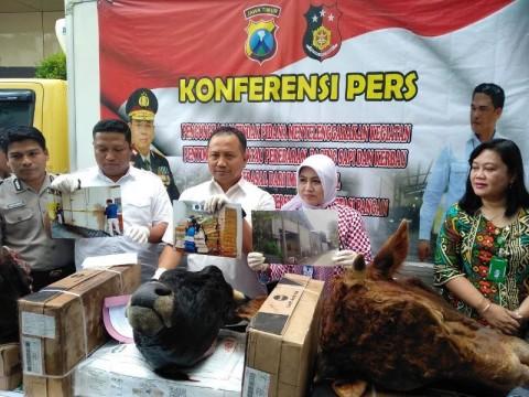 Polisi Bongkar Perdagangan Daging Impor Ilegal di Malang