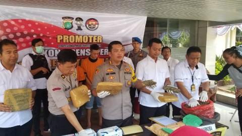 Polres Metro Tangerang Cegah Delapan Kg Ganja Siap Edar