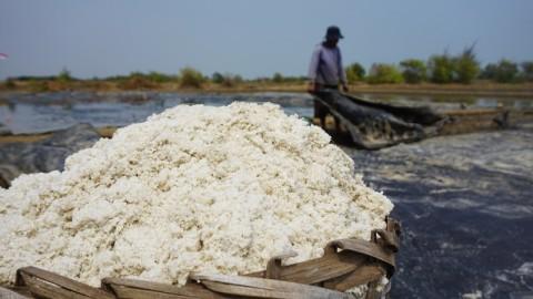 Harga Garam di Jepara Mencapai Rp300 Per Kg
