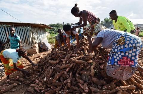 PBB: 821 Juta Orang Kelaparan Sepanjang 2018