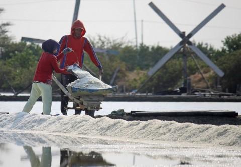 Pemprov Jatim Minta Pusat Hentikan Impor Garam