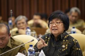 Pemerintah Tempuh Seluruh Prosedur Hukum Terkait Kebakaran Hutan