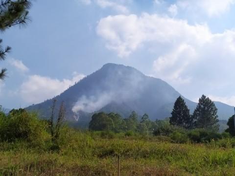 Kebakaran di Gunung Panderman Meluas