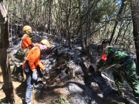 Kebakaran Gunung Panderman Diduga Faktor Alam