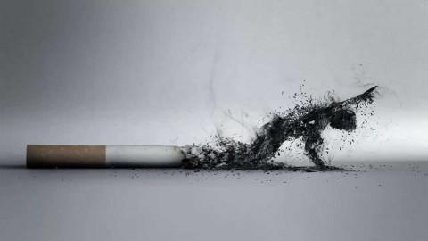 Perokok di Amerika Dukung Program Pengurangan Nikotin