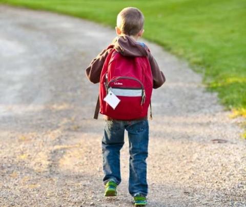 Berapa Beban Tas Normal Anak Ketika Sekolah?