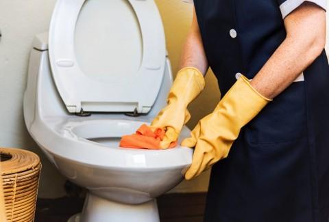 pentingnya menggunakan pelapis toilet duduk