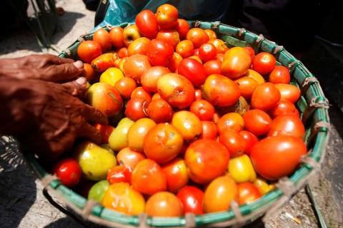 Punya Keunggulan, Industri Saus Tomat RI Bersaing Ketat