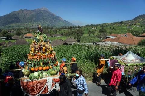 Serunya Tradisi Tungguh Tembakau Petani Lereng Merbabu