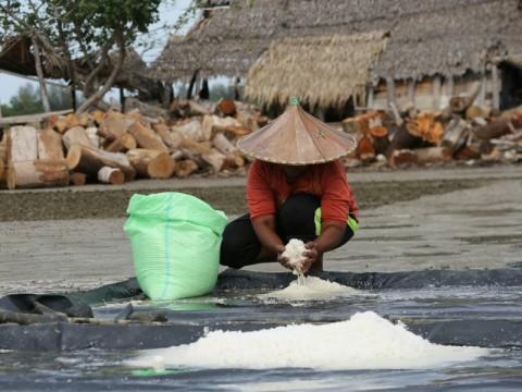 Industri Siap Tingkatkan Serapan Garam Lokal hingga 10%