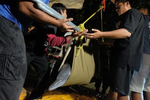 Dua Lumba-lumba Dipindahkan dari Hotel di Buleleng