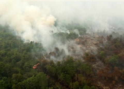 Sebaran Asap Akibat Kebakaran Hutan Meluas