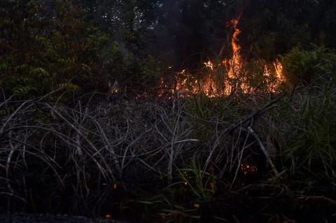<i>Water Bombing</i> Dilakukan Padamkan Karhutla di Riau