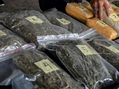 Polisi Gagalkan Pengiriman 259 Kg Ganja di Jambi