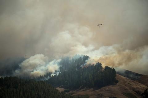 Kebakaran Hutan Landa Gran Canaria, 5.000 Orang Dievakuasi