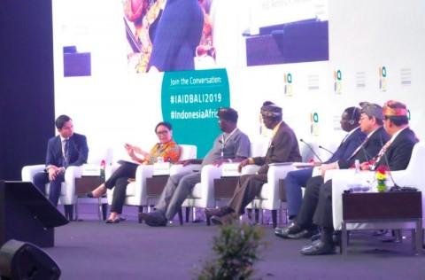 Indonesia Ingin Jadi Bagian dari Pembangunan di Afrika