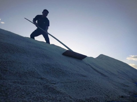 Realisasi Impor Garam Sudah 1,5 Juta Ton
