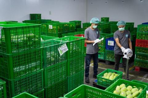TaniHub Gandeng IPB Perkuat SDM Pertanian via Teknologi