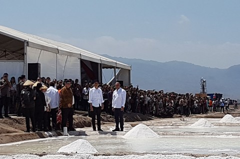 Jokowi Tinjau Tambak Garam di Kupang