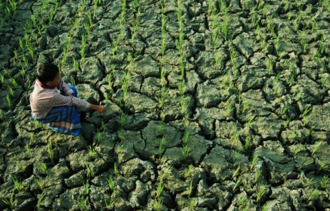 DKI dan Banten Terancam Kekeringan
