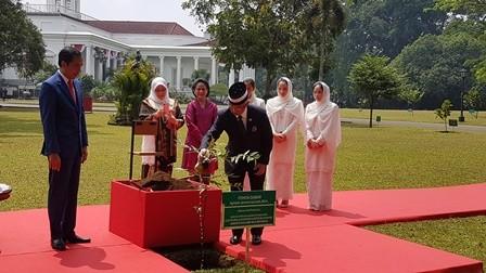 Presiden Jokowi Terima Kunjungan Raja Malaysia