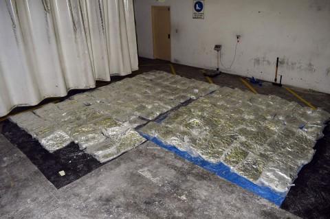 Australia Sita 755 Kg Sabu yang Disembunyikan di Kulit Sapi Beku