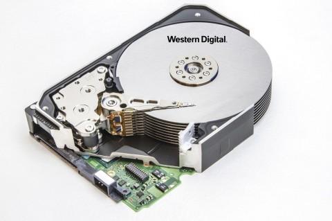 WD Pamer HDD 18TB dan 20TB