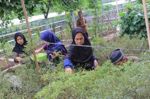Pemkot Tangerang Sediakan Rumah Perlindungan Lansia Terlantar