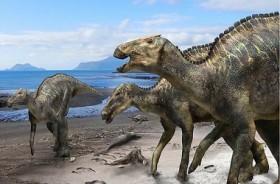 Spesies Baru Dinosaurus Ditemukan di Jepang