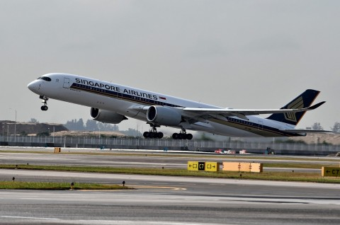 Topan Faxai, Penerbangan dari Singapura ke Jepang Ditunda