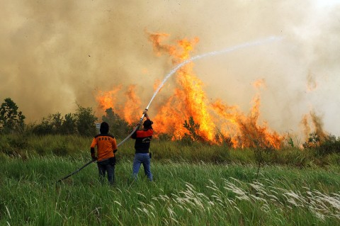 Lahan Kosong Sekitar Bandara Syamsudin Noor Terbakar