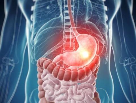 Mengenal Mikrobioma dan Peranannya dalam Tubuh