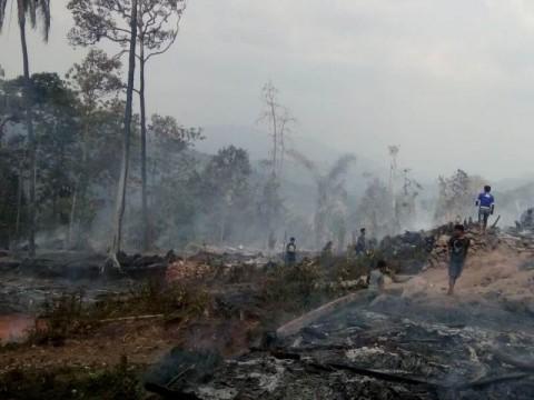 Permukiman Suku Baduy Luar Terbakar