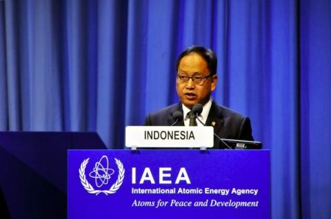 Kemampuan Teknologi Nuklir Indonesia Makin Diakui di IAEA