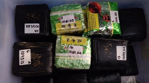 Narkoba Diselundupkan di Tengah Kabut Asap Riau