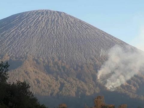 6 Hektare Hutan Gunung Semeru Hangus