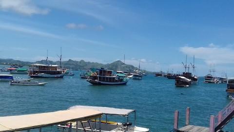 Pemerintah Rancang Pelabuhan Kargo Baru di Labuan Bajo