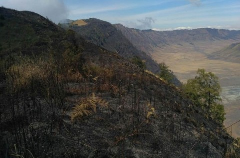 Mount Semeru Hiking Trails Closed