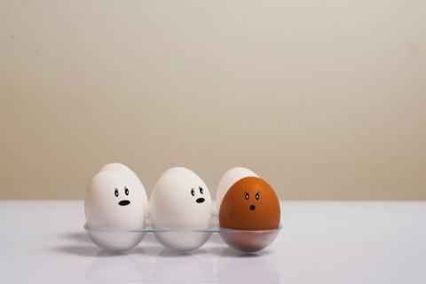 5 Makanan Berprotein yang Cocok untuk Menurunkan Berat Badan