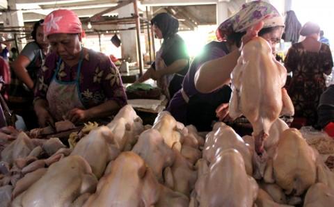 Peternak Broiler Tuntut Kestabilan Harga Ayam Hidup