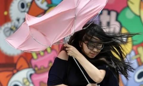 Bersiap Dilanda Topan, Taiwan Tutup Perkantoran dan Sekolah