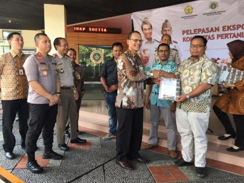 Jamur Susu Harimau Asal Banten Diminati Pasar Internasional