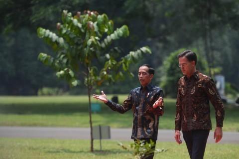 Jokowi Praises Dutch Govt's Commitment to Train Oil Palm Farmers