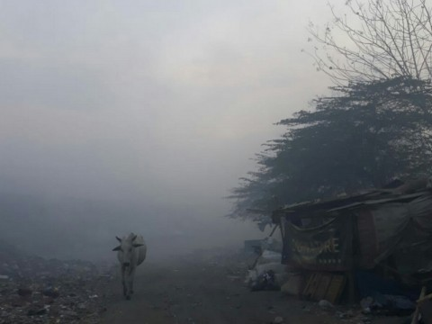 Ribuan Warga Terpapar Kebakaran TPA Putri Cempo Solo